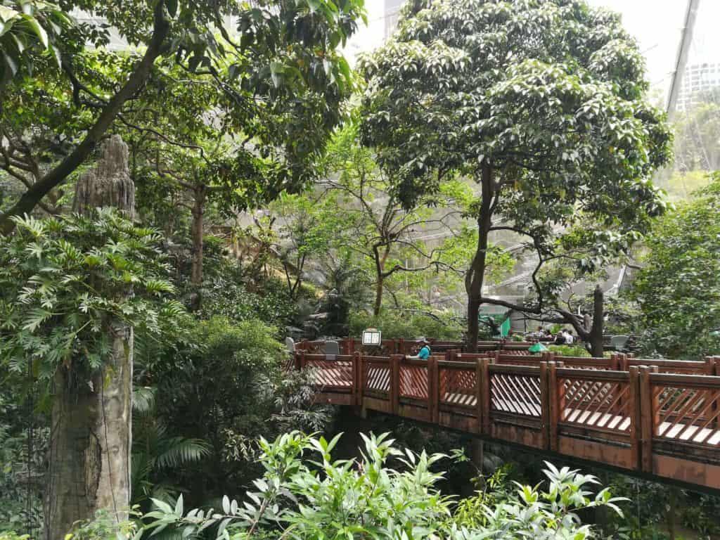 imagen gratis en Hong Kong 45234231101 8deef0b2ad k 1