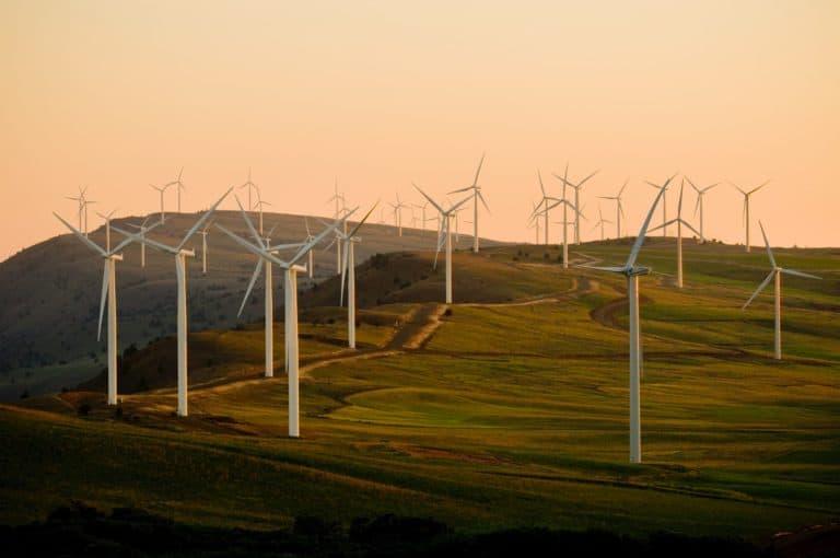 Para el año 2050 el mundo podría funcionar con energía renovable y a un costo más bajo