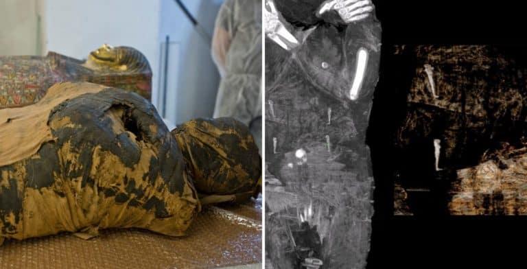 Un grupo de arqueólogos reveló que una momia que fue descubierta hace casi 200 años fue la primera mujer embarazada momificada de Egipto