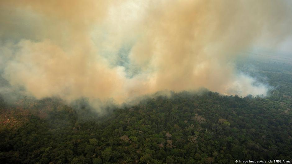 Por Segundo Mes Consecutivo Aumenta La Deforestación De La Selva Amazónica