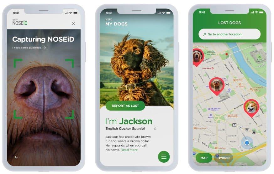 Identificar Perros Perdidos