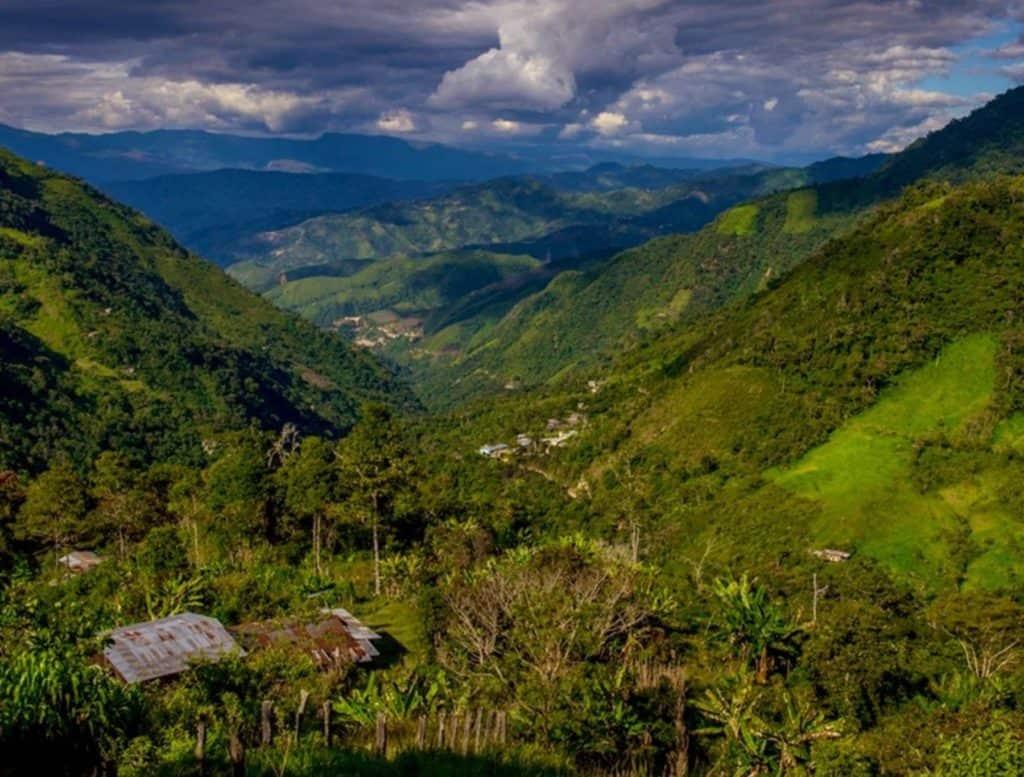 Perú Crea El Área De Conservación Regional Páramos Y Bosques Montanos De Jaén Y Tabaconas Para Conservar Ecosistemas De Montaña En Cajamarca