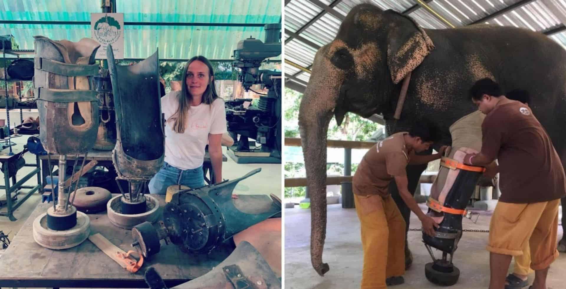 Una veterinaria australiana es conocida por ayudar a que elefantes que han sido heridos en minas terrestres reciban prótesis para sus patas