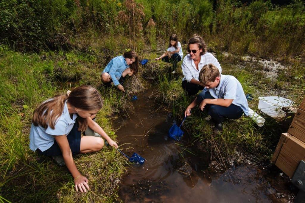 Imagen Medio Ambiente Educacion Ambiental Argentina
