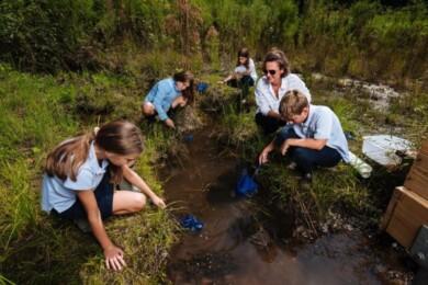 educacion ambiental argentina