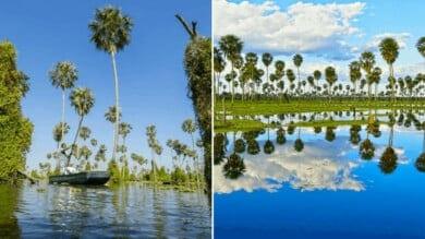 Cómo-llegar-al-Bañado-La-Estrella-maravillas-naturales-de-Argentina