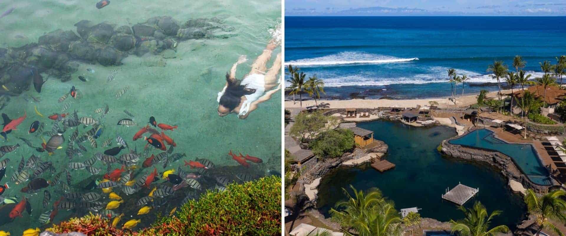 El Four Seasons Resort de Hawái cuenta con su propio acuario y la posibilidad de bucear junto a biólogos marinos