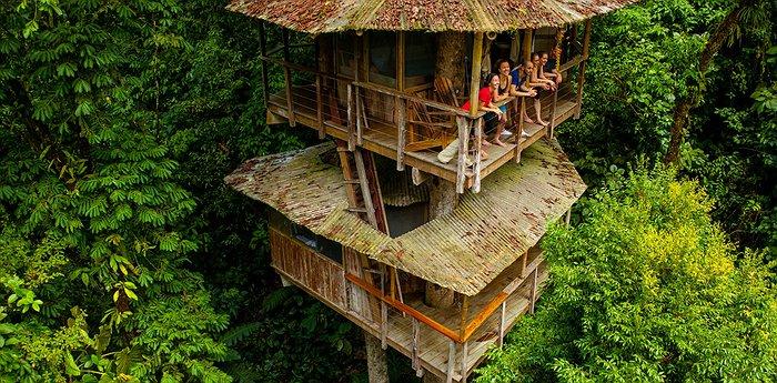 Imagen Mejores Lugares Para Dormir En Casas Del Árbol Finca Bellavista.jpg.700X345 Q85 Box 01281595914 Crop Detail