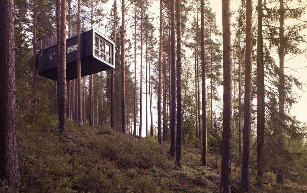 Imagen Mejores Lugares Para Dormir En Casas Del Árbol Harads Casa De Arbol Suecia