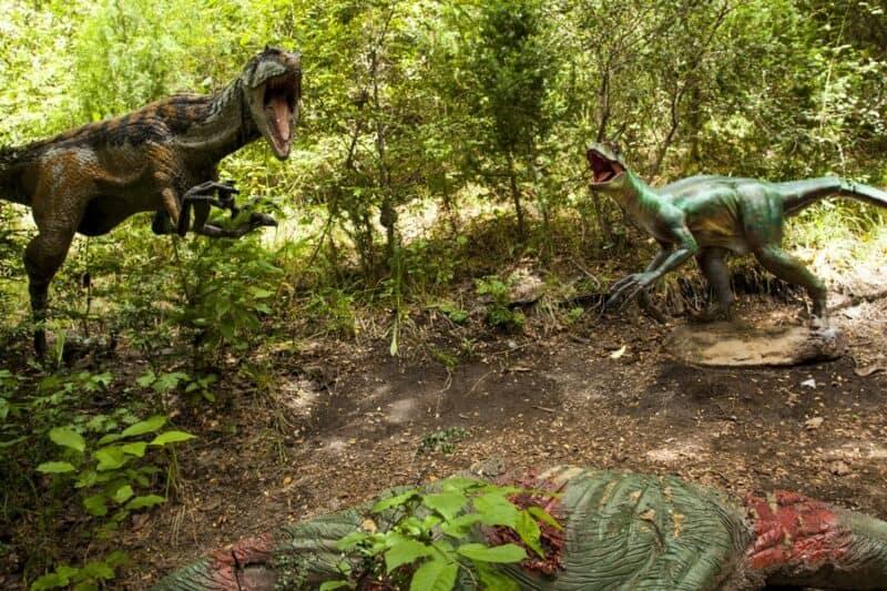 Qué Hacer En Bariloche Con Lluvia: Dinosaurios
