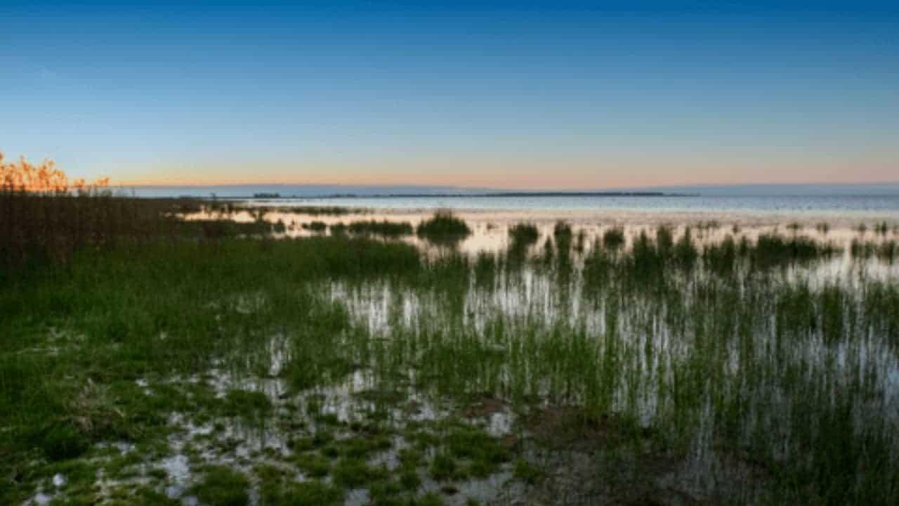 qué-hacer-en-el-parque-nacional-ansenuza-argentina