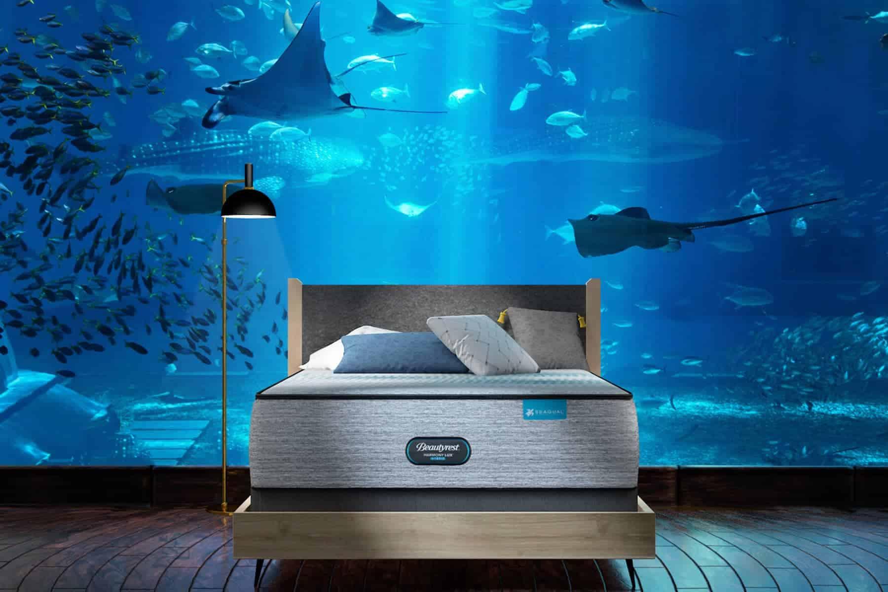 Una compañía de colchones ofrece la posibilidad de pasar la noche en el acuario de Long Island, Estados Unidos