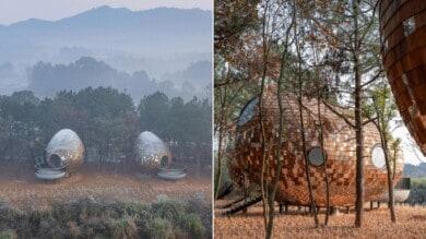 Este hotel en Shanghái ha diseñado cuatro cabañas con formas de semilla para el entorno rural de los bosque en Jiangxi