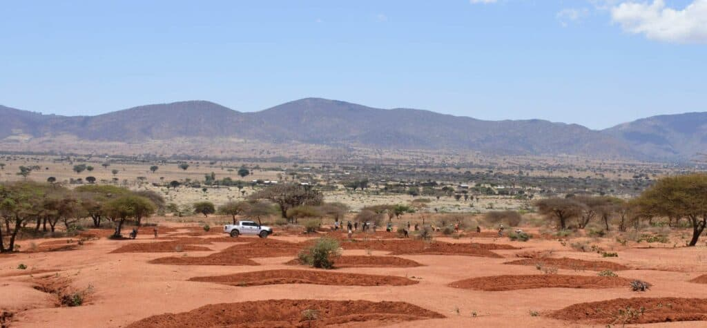 Terreno Árido, Previo A Trabajos De Restauración