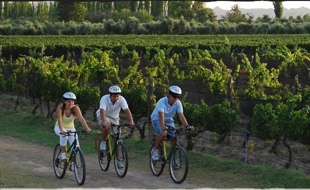 Imagen Recorrer Los Viñedos De Mendoza En Bicicleta Bodegas De Mendoza En Bicicleta 1
