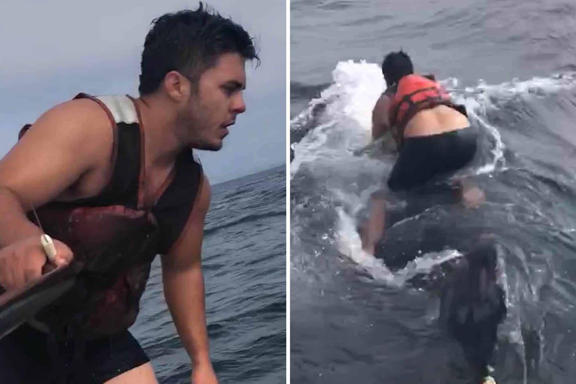 Saltó sobre el lomo de una ballena