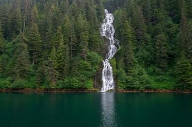 Un importante bosque nacional de Estados Unidos, ubicado en Alaska, volverá a ser protegido por las autoridades