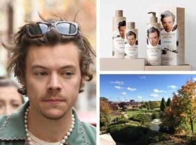 día de spa con temática de Harry Styles