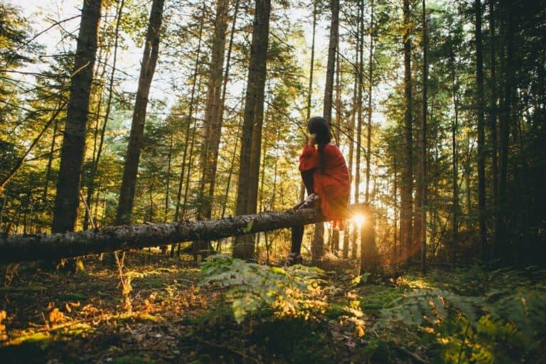 Baños de bosque, un modo distinto de viajar que busca conectar con la naturaleza