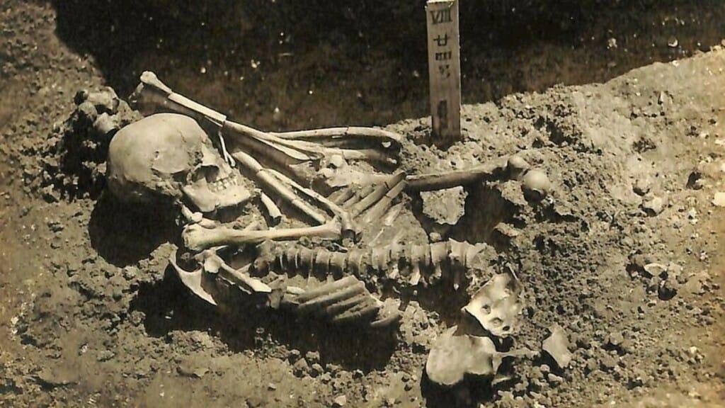 Restos De Víctima De Ataque De Tiburón De Hace Más De 3.000 Años