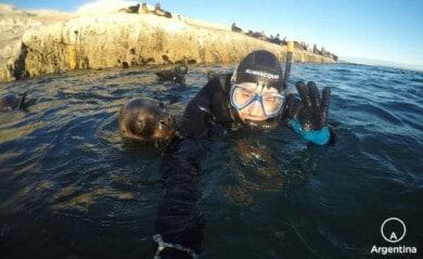 Buceo con lobos marinos en Chubut