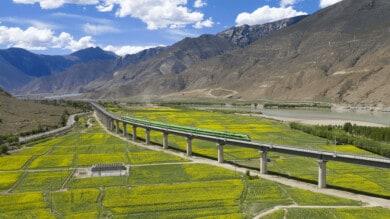 tren bala tibet
