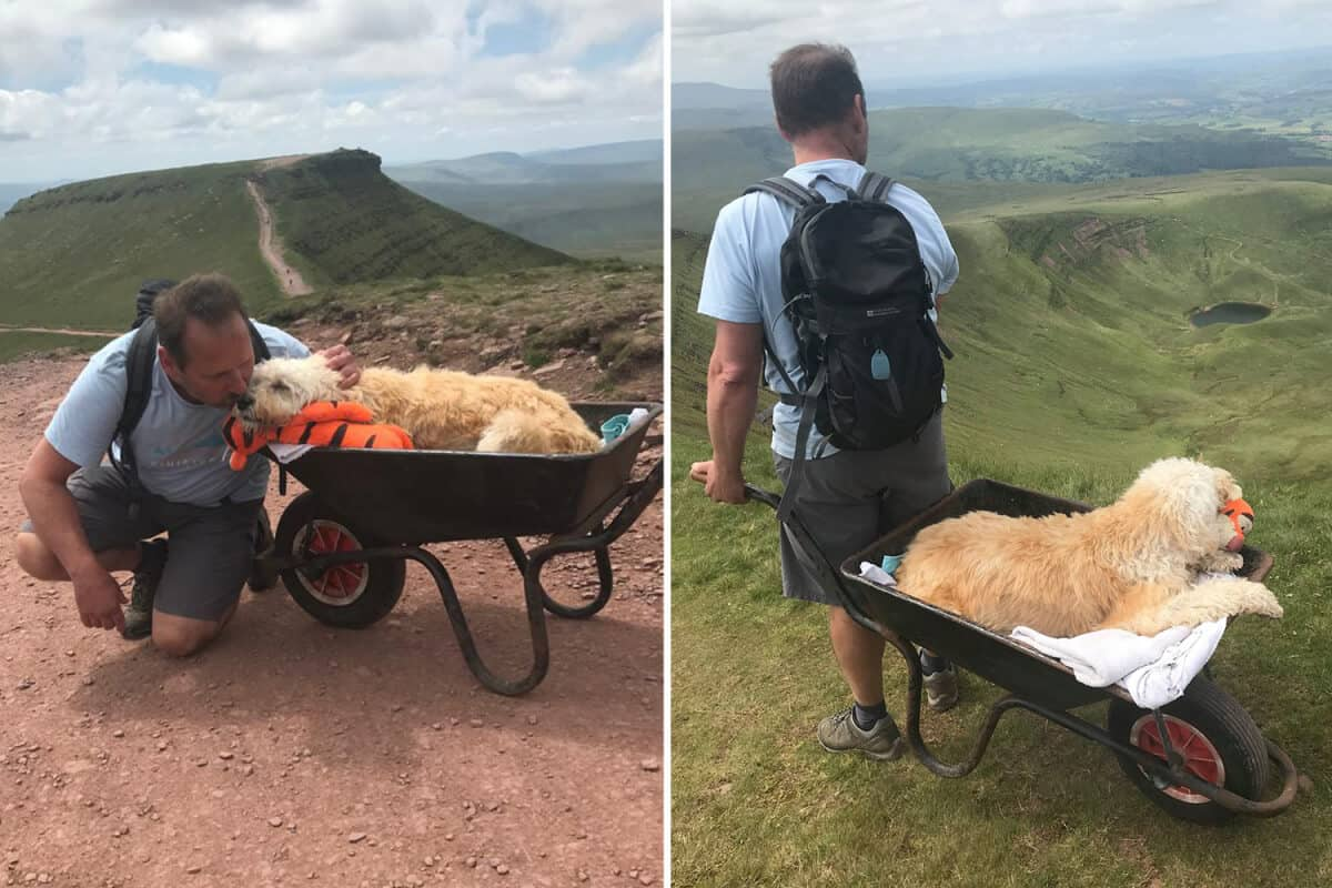 Llevó a su amado perro a su última aventura a través de su ruta favorita