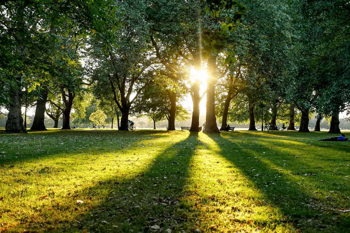 Guía definitiva para Visitar el Hyde Park en Londres