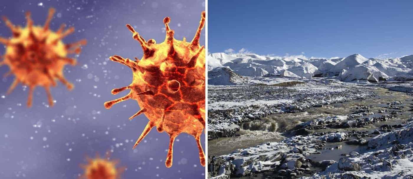 Un grupo de científicos descubrieron virus de hace 15.000 en glaciares de Tíbet
