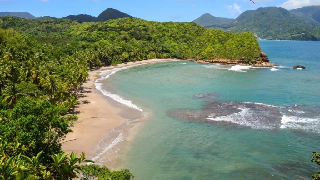 Cómo Llegar A Dominica