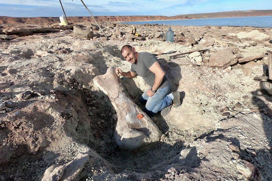 restos-de-un-dinosaurio-gigante-en-argentina-lago-barreales