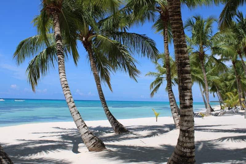 Qué Ver Y Hacer En Punta Cana