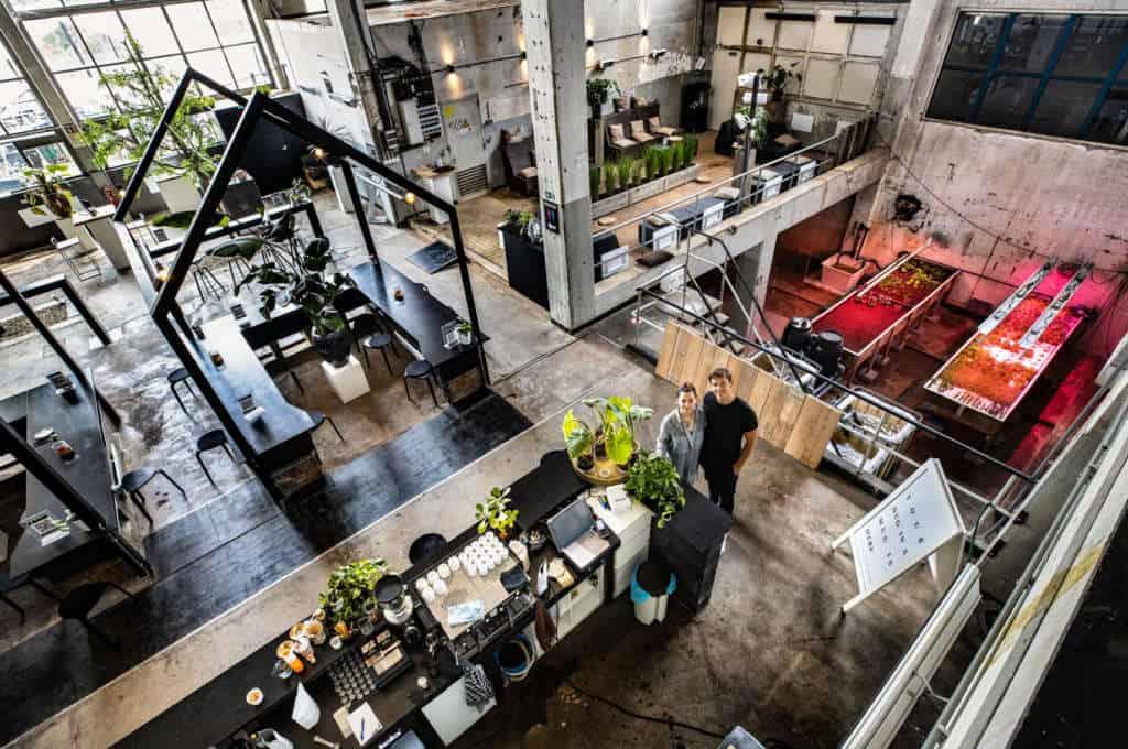Países Bajos: La Ciudad De Eindhoven Celebra La Apertura Del Primer Restaurante Acuapónico Del Mundo