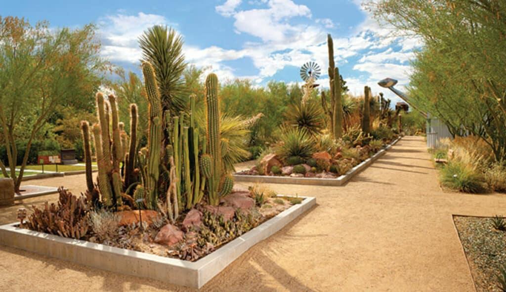 Los 10 Mejores Lugares Cerca De Las Vegas Para Visitar: Springs Preserve