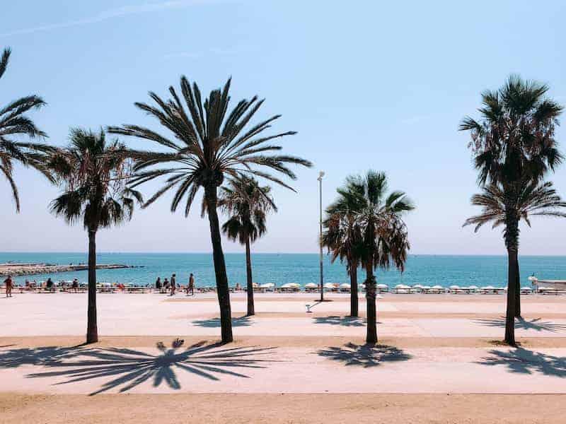 Cosas Para Hacer En Barcelona En 3 Días