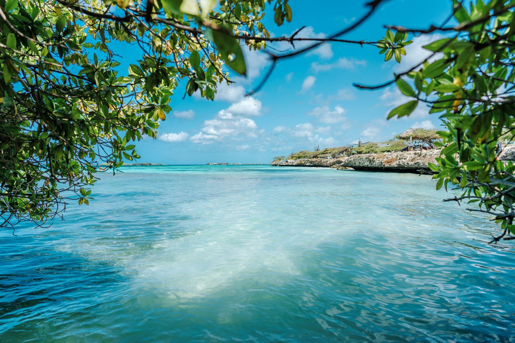 Qué hacer en Aruba 10 cosas que no te puedes perder de la isla más feliz del Caribe