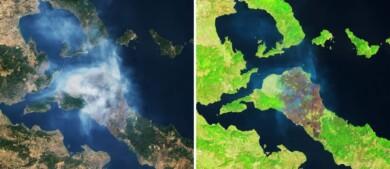 Imágenes satelitales recientes muestran el daño generado por los incendios forestales de Grecia