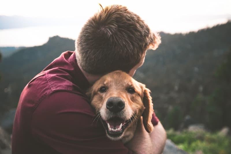 Persona Con Su Mascota