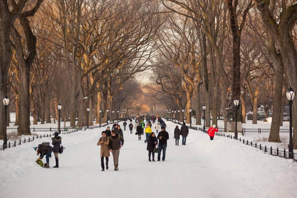 Nueva York en Enero / New York in January