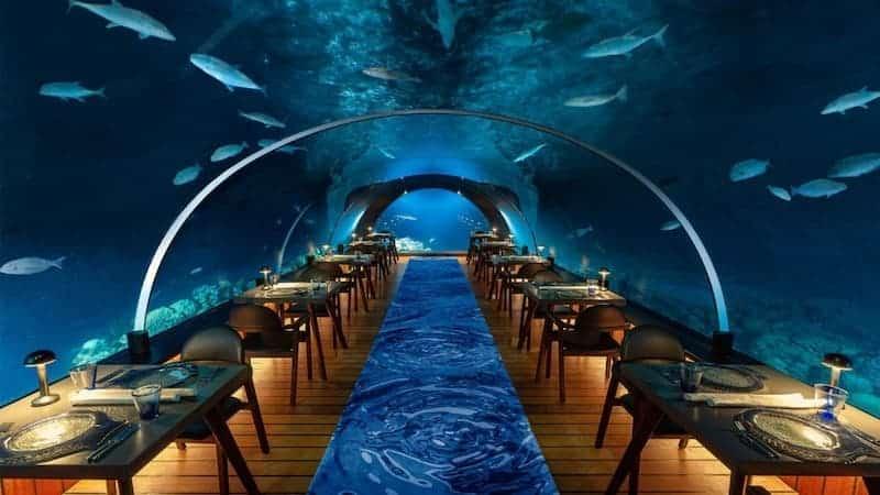 Opera Bajo El Agua - 5.8 Undersea Restaurant