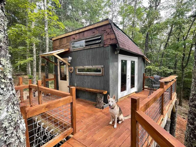 Casa Del Árbol Para Alquilar En Airbnb
