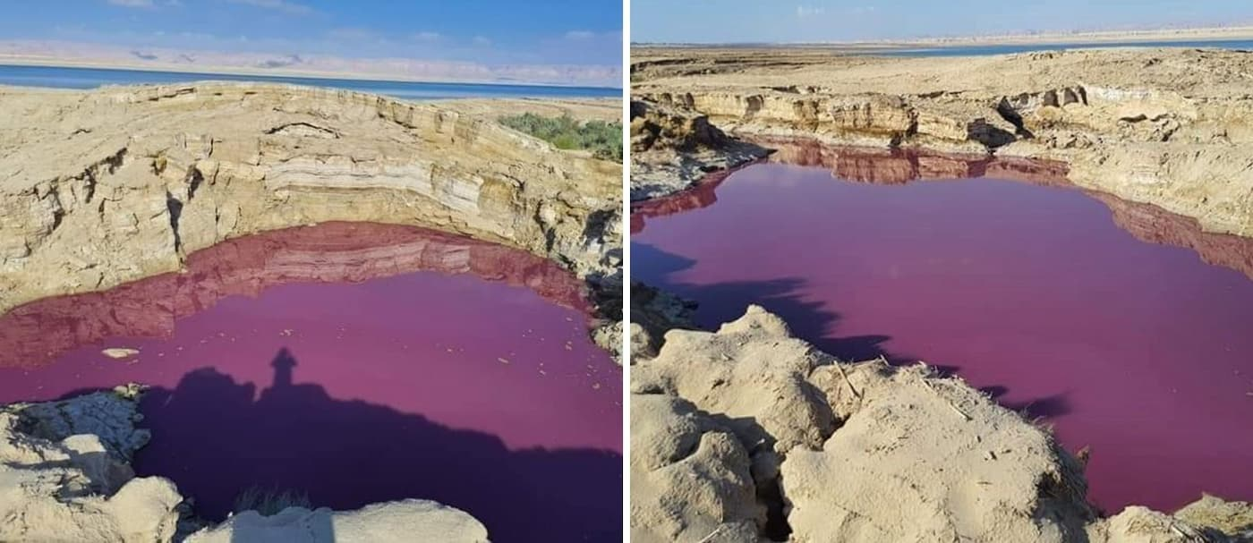 Un estanque cerca del Mar Muerto se tiñó de rojo y se desconocen los motivos
