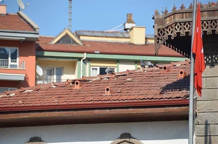 tejas con casitas para pájaros