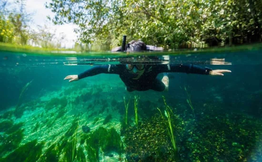Snorkeling en Bonito