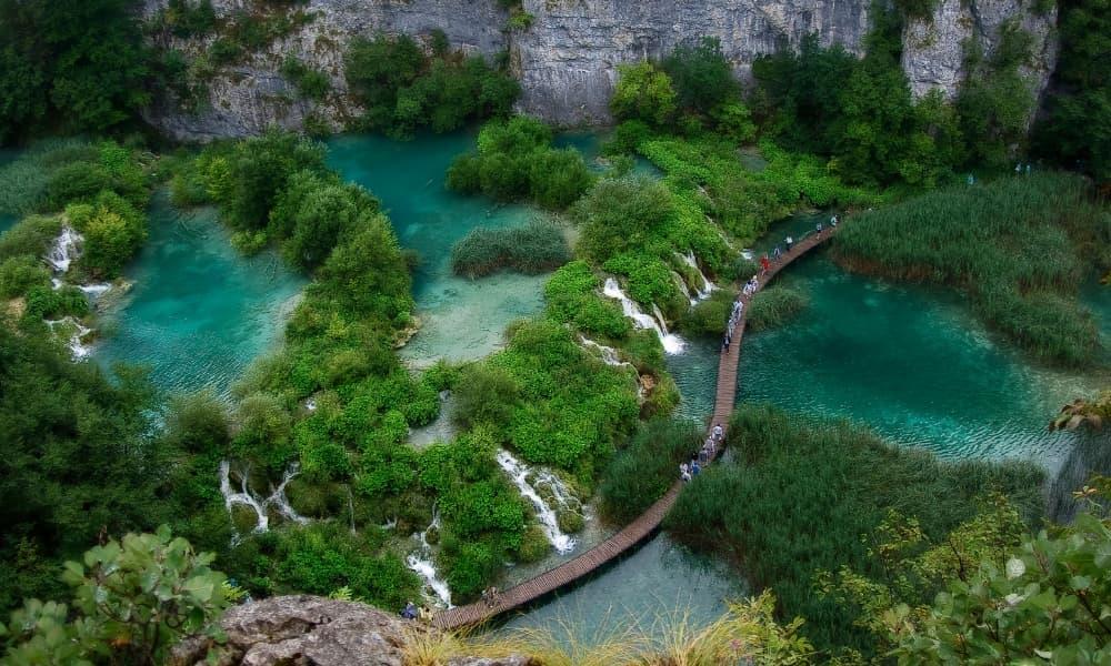 Los Bosques Más Bonitos de Europa