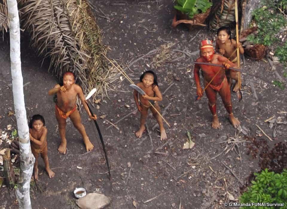brasil grupo indigena